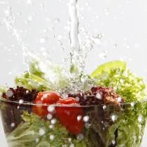 Dieta-personalitzada